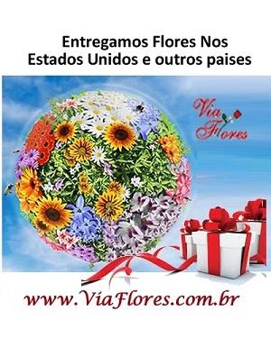 Floricultura Internacional