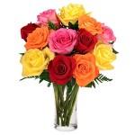 Via Flores Canada 12 Rosas Coloridas
