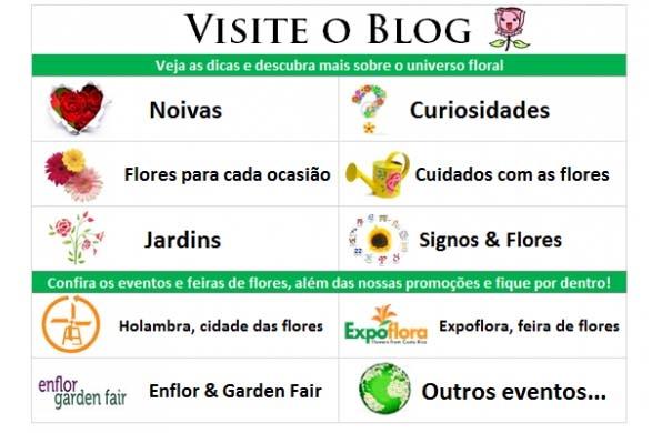 Blog ViaFlores