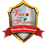 Floricultura Internacional  - Via Flores